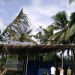 Pengering Kopra Tungku Biomassa